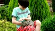 Rabbit is Beautiful animal of Nature video