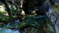 Radovna river flows in Vintgar Gorge. Wooden trails and bridges. Clean blue water and green forest. Triglav National Park, Julian Alps, Bled valley, Slovenia. video