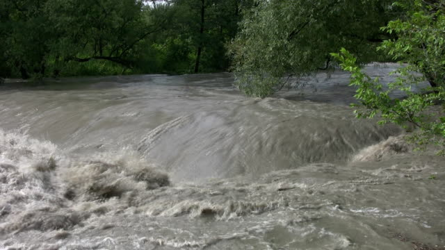 Raging flood river. Wide shot upstream. video
