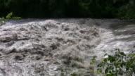 Raging flood river. Wide shot. video