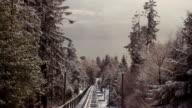 Railcar video