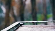Rain Drops on the Windowsill in Slow Motion video