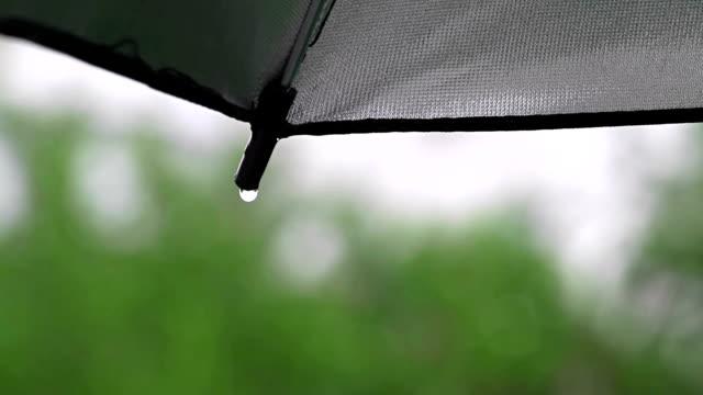 Rain drops on umbrella video