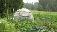 Rain falling on greenhouse video