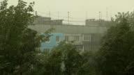 Rain in the city in spring video