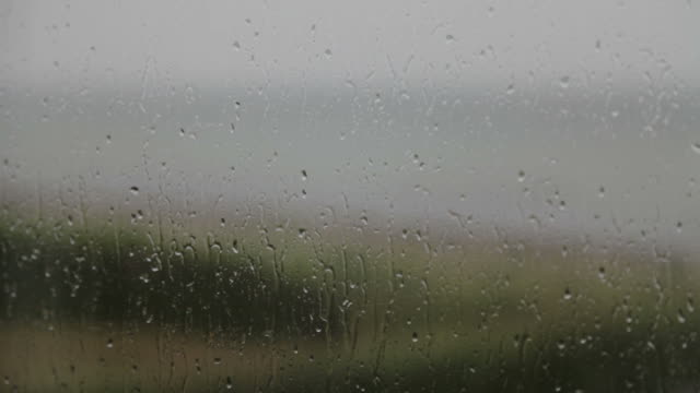 Rain on window. video
