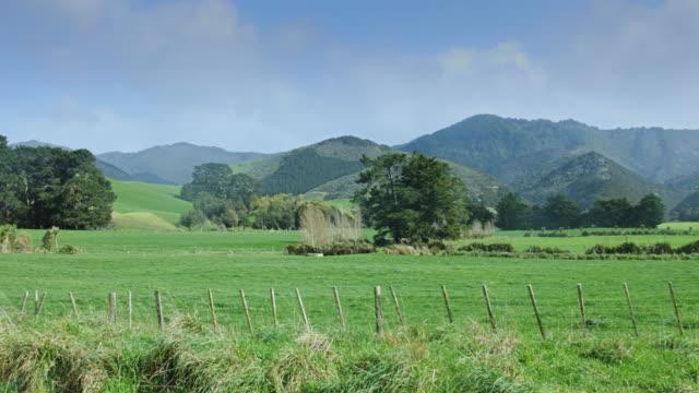 Rain Over Fields on Karikari Peninsula, New Zealand video