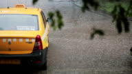 Rain pouring down on a taxi car and pavement. Blurred branches of a tree sway in the wind video
