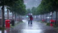 Rain video