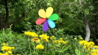 Rainbow colored windmill by Yellowhead plant video