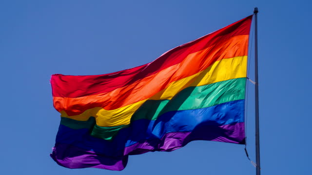 Rainbow Gay Pride Flag video
