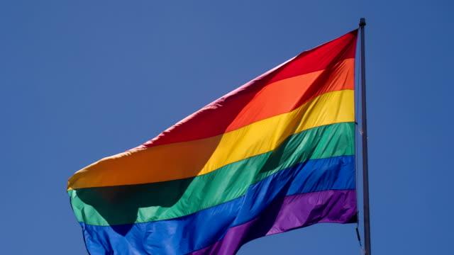 Rainbow Gay Pride Flag video