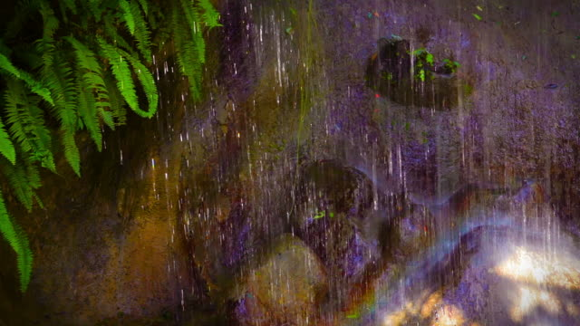 Rainbow in waterfall video