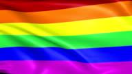 Rainbow LGBT Flag video