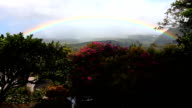 Rainbow over a garden in the tropics video