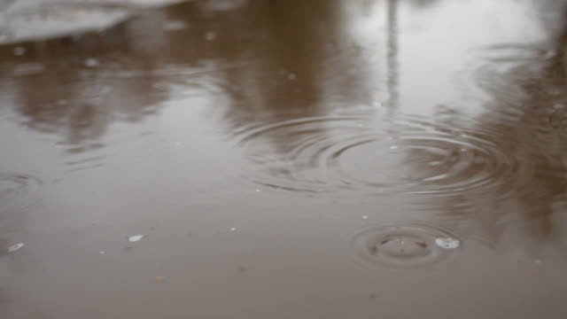 raindrops in a puddle of water splash blue autumn nature overcast gloomily video