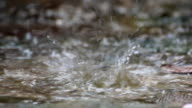 raindrops in puddle video