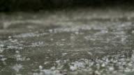 Raindrops splashes on the street video