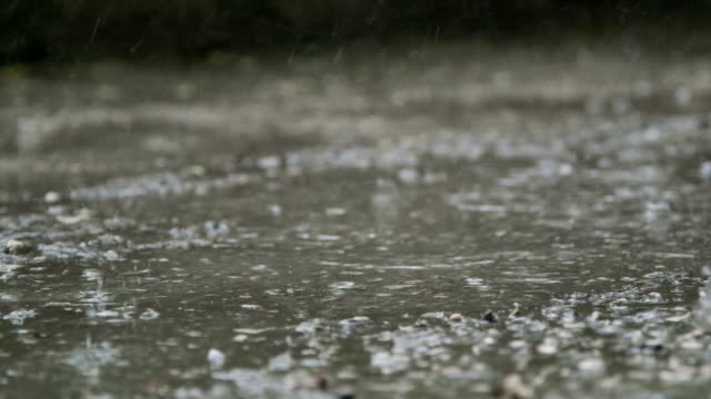 Raindrops splashes on the street video