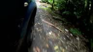 Rainforest Drive video