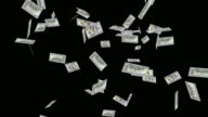 Raining New One Hundred Dollar Bills video