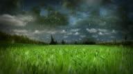 Rainy Day - Loop video