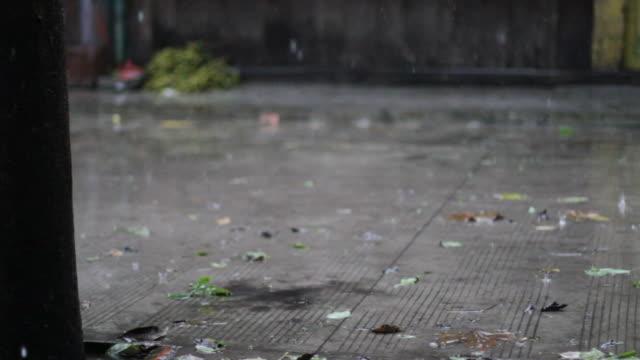Rainy Street Scene video