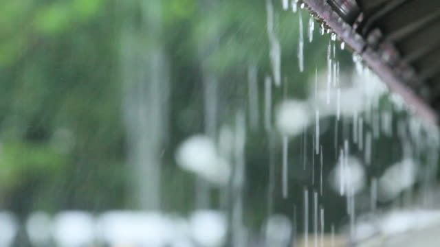 Rainy video