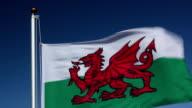 Raising the Wales Flag video