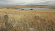 Ranch Grasslands Wind dolly shot video