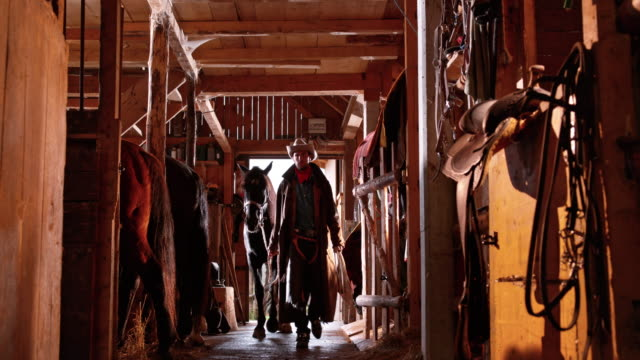 DS Rancher leading his horse into its stall video