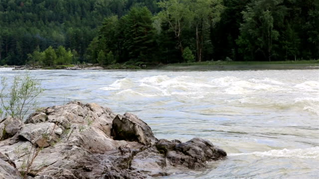 Rapid for the Katun River. Altai Krai. video