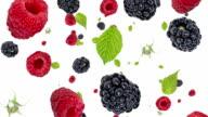 Raspberries and Blackberries falling down (ends on blue) video
