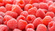 Raspberry background video