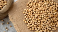 Raw chickpeas on a burlap rotating. Seamless loopable video