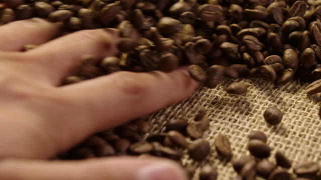 Raw coffe beans in slow motion 4K video
