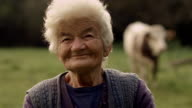 Real People Senior Woman and a Cow video
