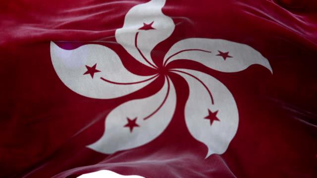 Realistic Hong Kong Flag 3d animation loop video
