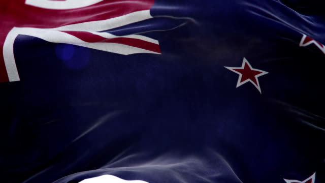 Realistic New Zealand Flag 3d animation loop video