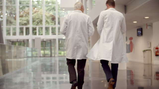 Rear View Of Doctors Talking As They Walk Through Hospital video