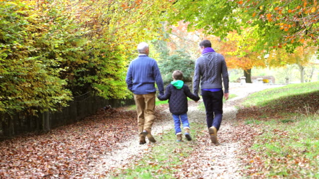 Rear View Of Male Multl Generation Family On Autumn Path video