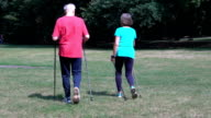 Rear view of senior couple walking with hiking poles video