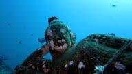 Reclining Buddha Underwater video