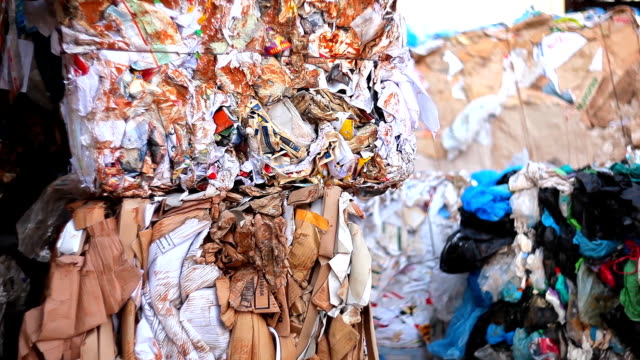 Recycling garbage. video