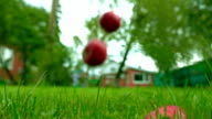 Red and green apples falling on the grass. Super slow motion shot video