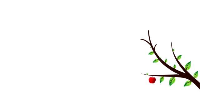 red apple tree video