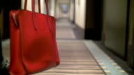 Red Bag in Female Hands video