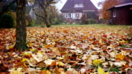Red brick cottage, house, family home and autumn leaves video