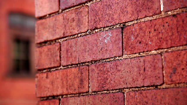 Red brick wall facade and windows architecture background video