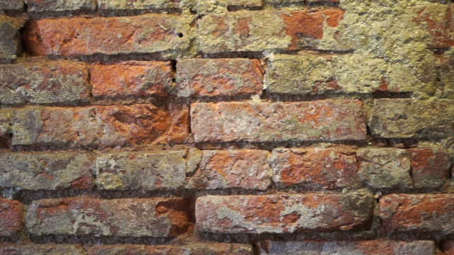 Red brick wall grunge texture video